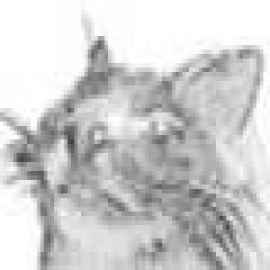 avatar_FidelCastor