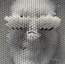 avatar_GreyGnome