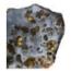 avatar_meteoritics