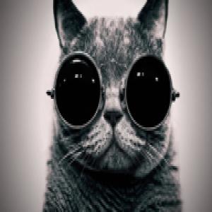avatar_pdepuydt