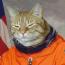 avatar_tomnd